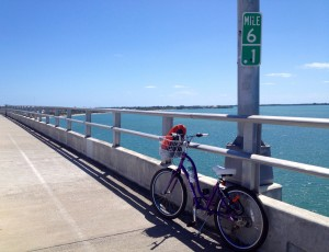 If you're feeling fit you an cycle across and visit Key Biscayne and Bill Baggs State Florida Park