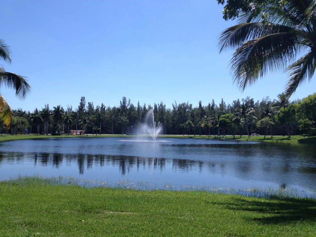 A watery oasis near Oleta State Park, FL