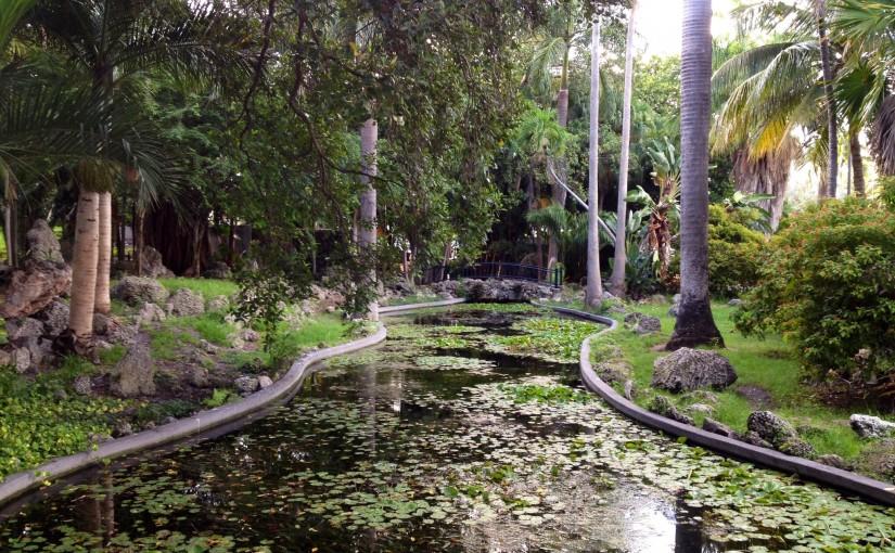 Hidden Treasures – Rock Garden Pond